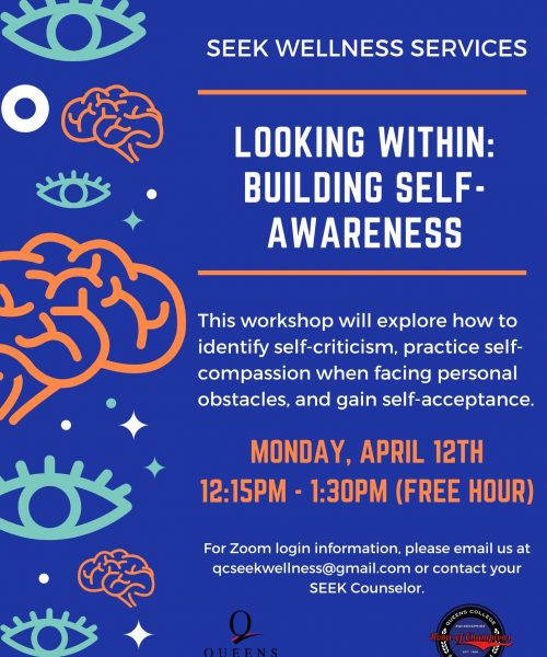 Looking Within Building Self Awareness SEW